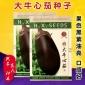 牛心茄子种子 大田菜园高产易种紫黑油亮肉质细腻茄子籽 蔬菜种子