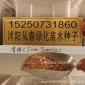 批发新采香椿种子 香椿树种子 红油香椿种子 芽苗菜味道好 好吃